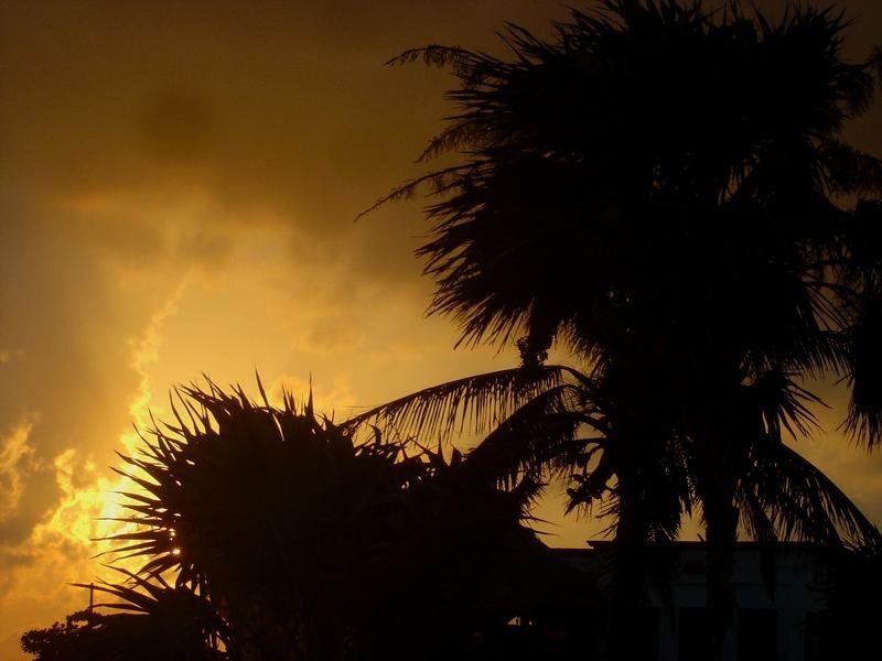 sunset maya tanka