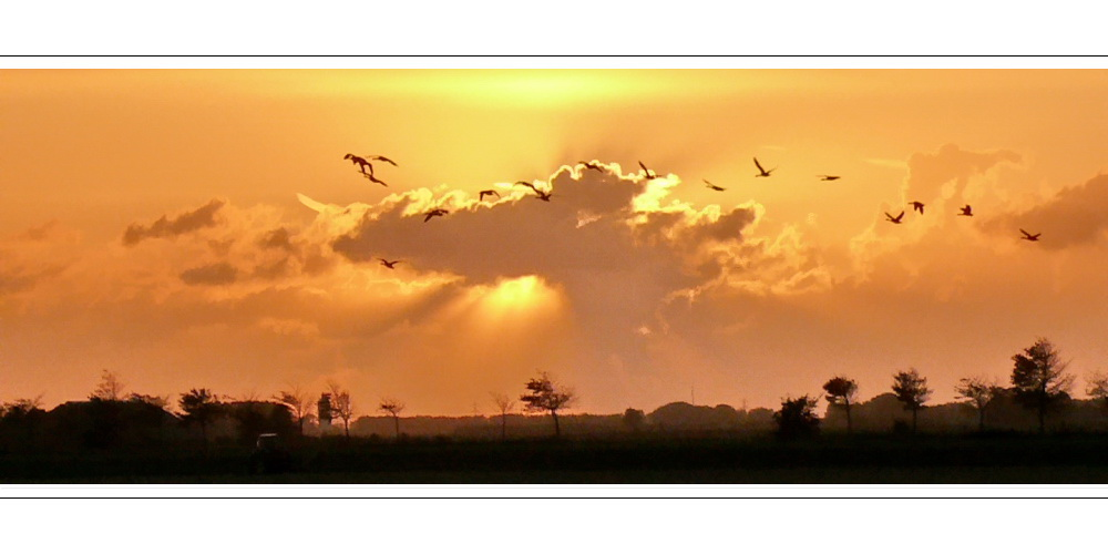 Sunset on 27.09.07 (view from Oranjedijke)