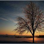 Sunset on Ice [2]