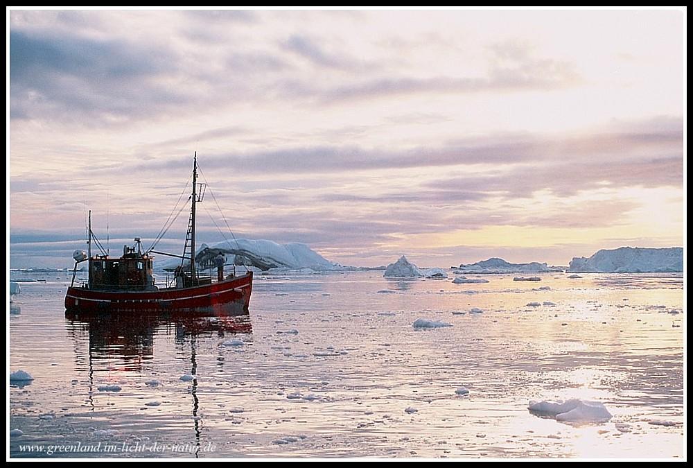 sunset-sailing among the icebergs