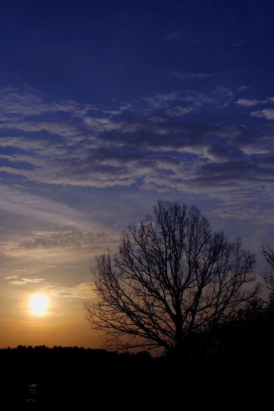 Sunset (saulelydis)