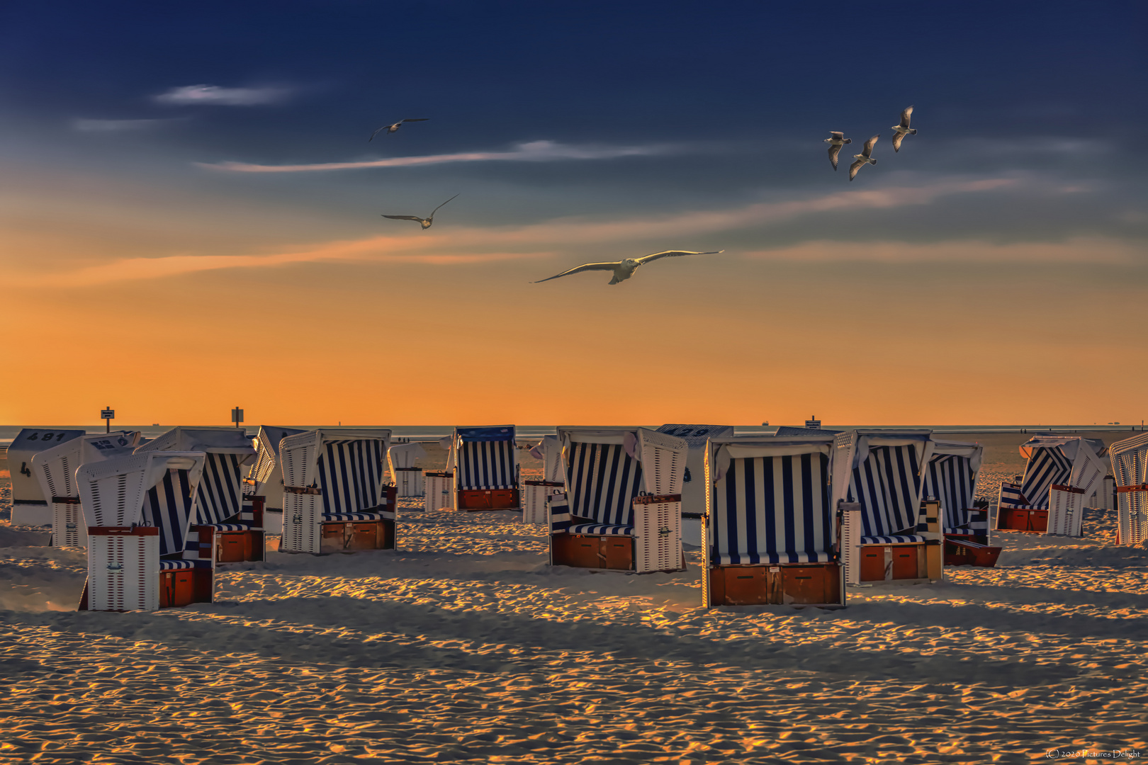 - Sunset SPO -