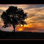 Sunset, Teteringen