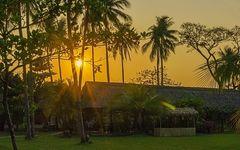 Sunset unter Palmen