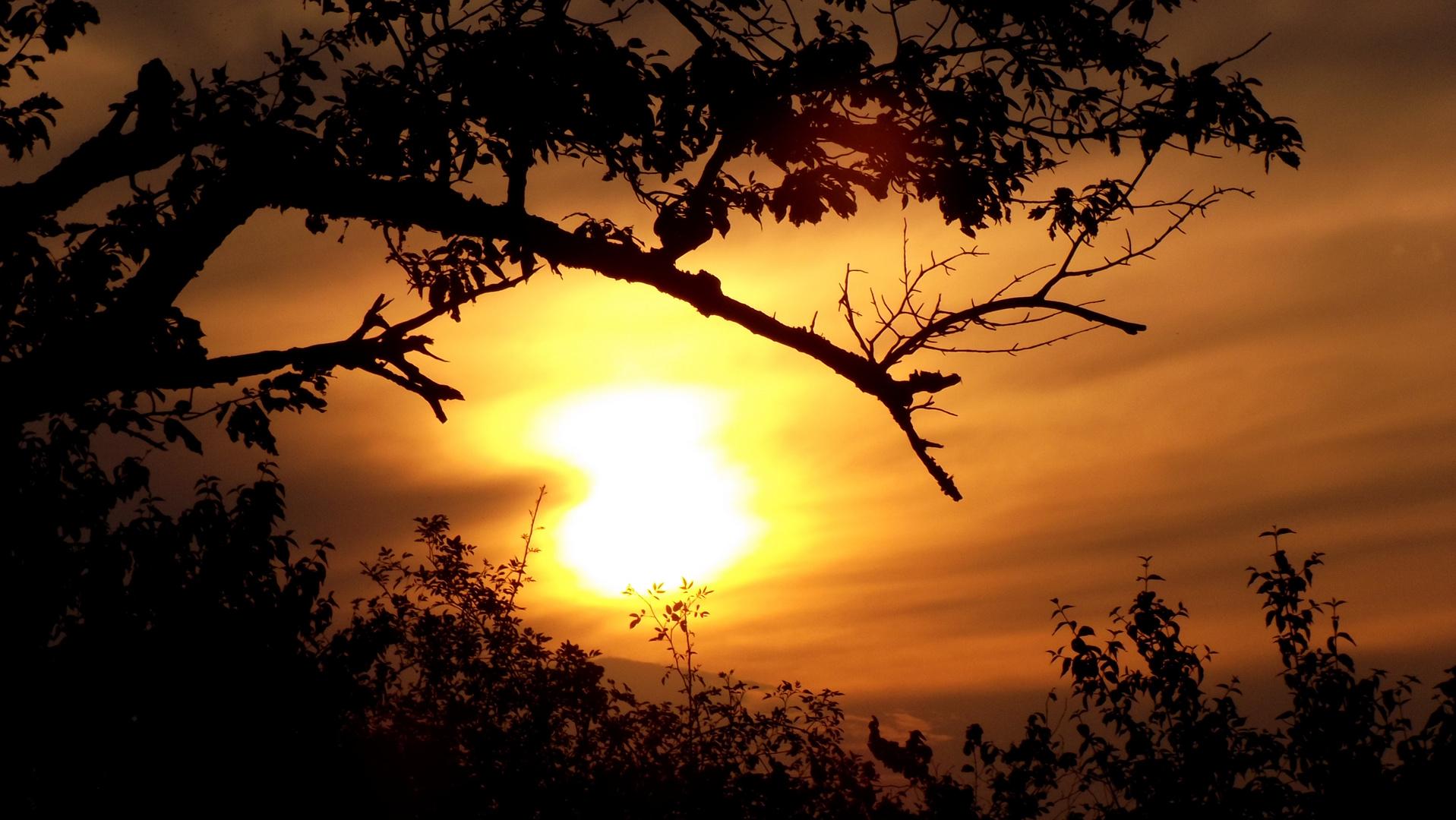 Sunset vom 23.8.2015 19:53