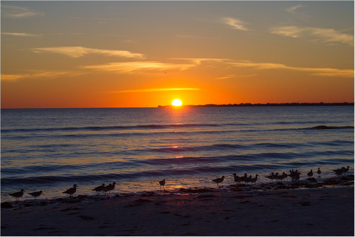 sunset watching
