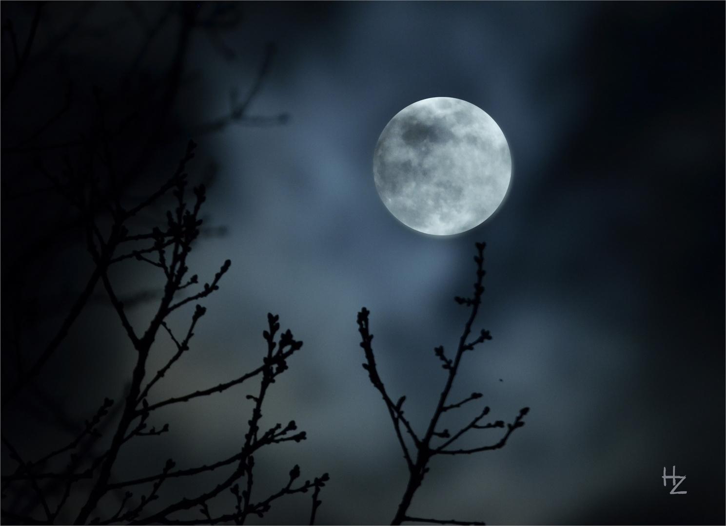 super snow moon 19.02.2019, 11 pm