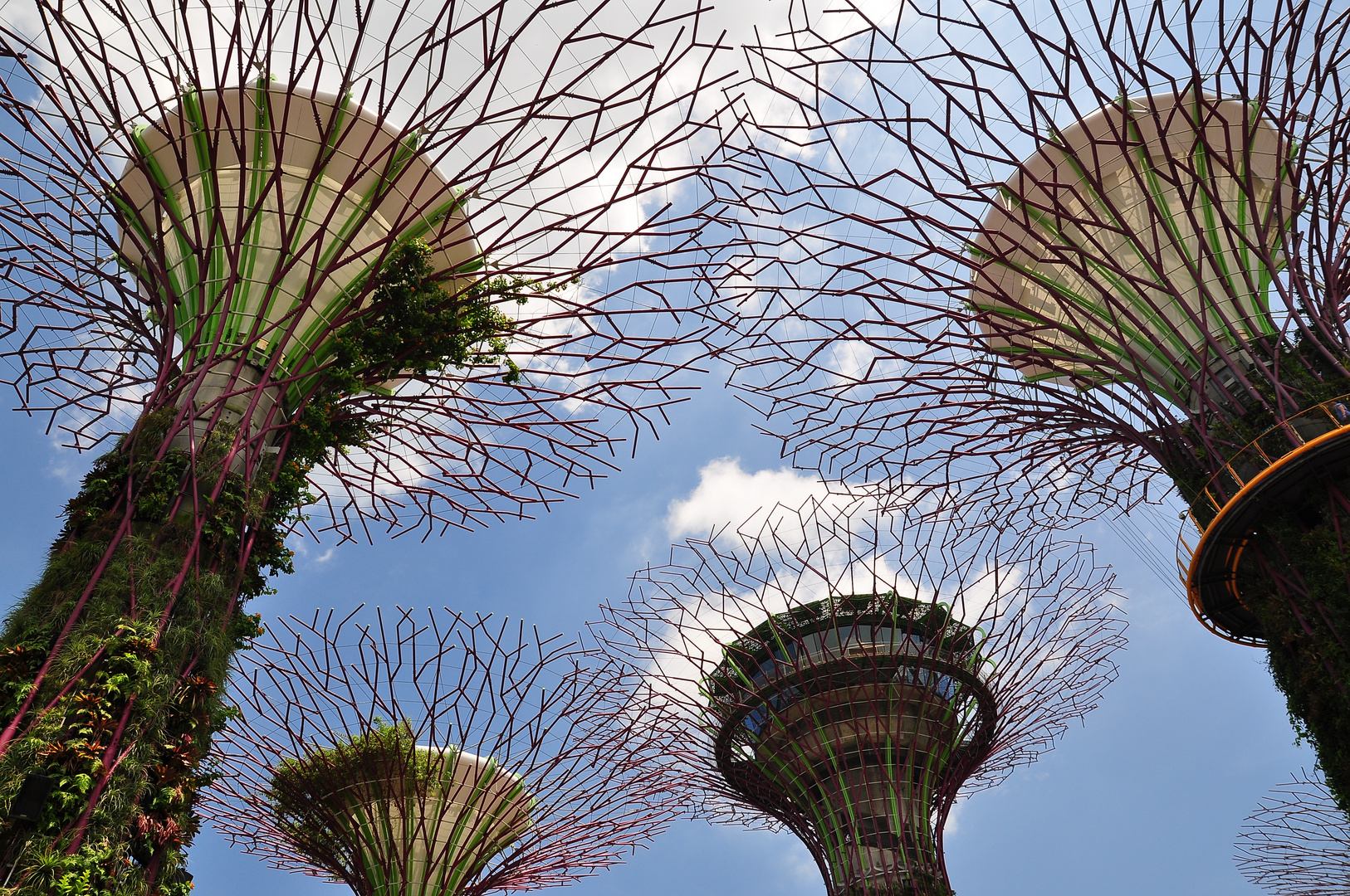 Supertrees in Singapur