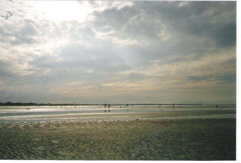 sur la plage abandonnée.....