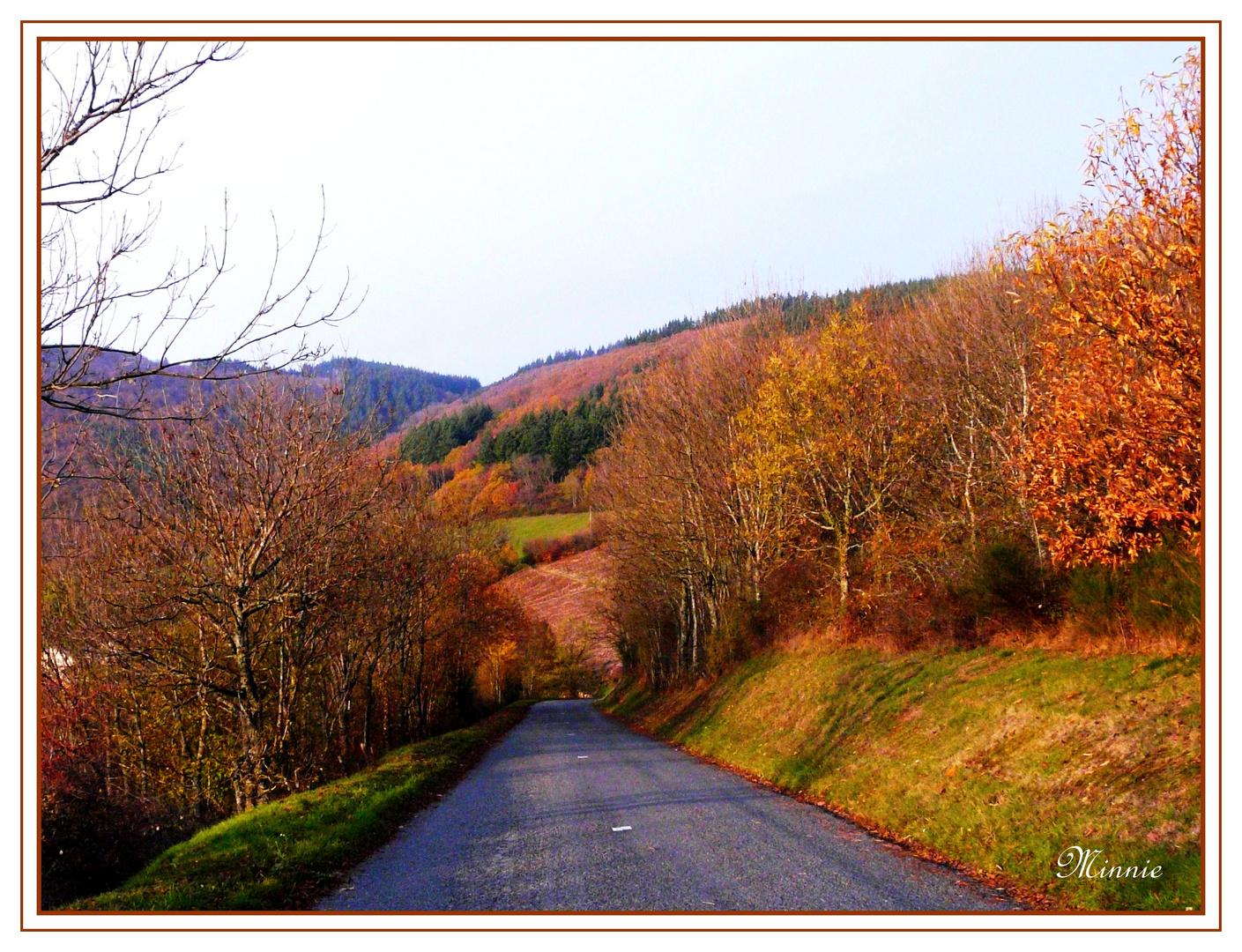""""""" Sur la route .........."""""""