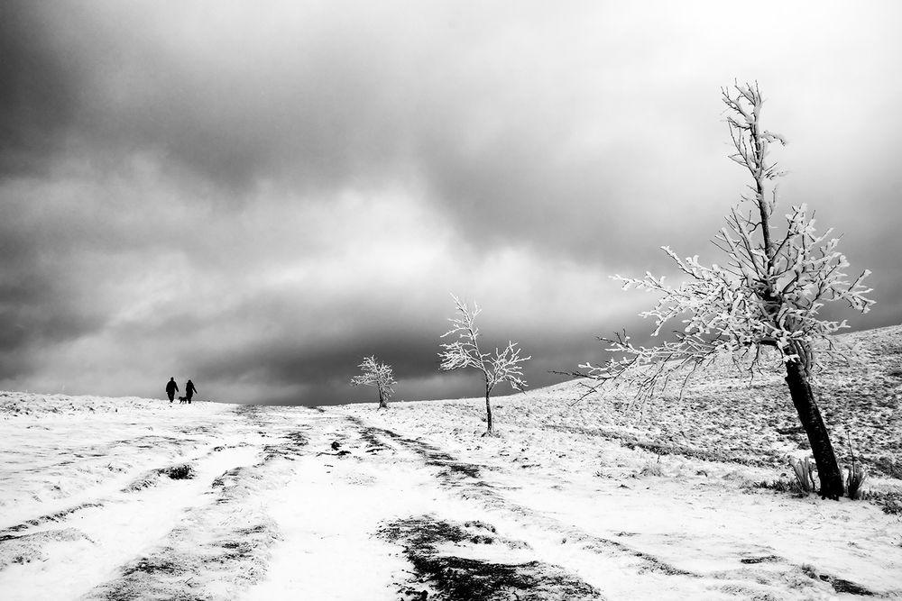 Sur la route des sommets
