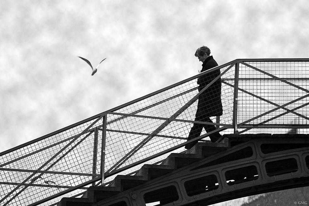 Sur le ponts de Paris # 2