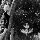 sur mon arbre