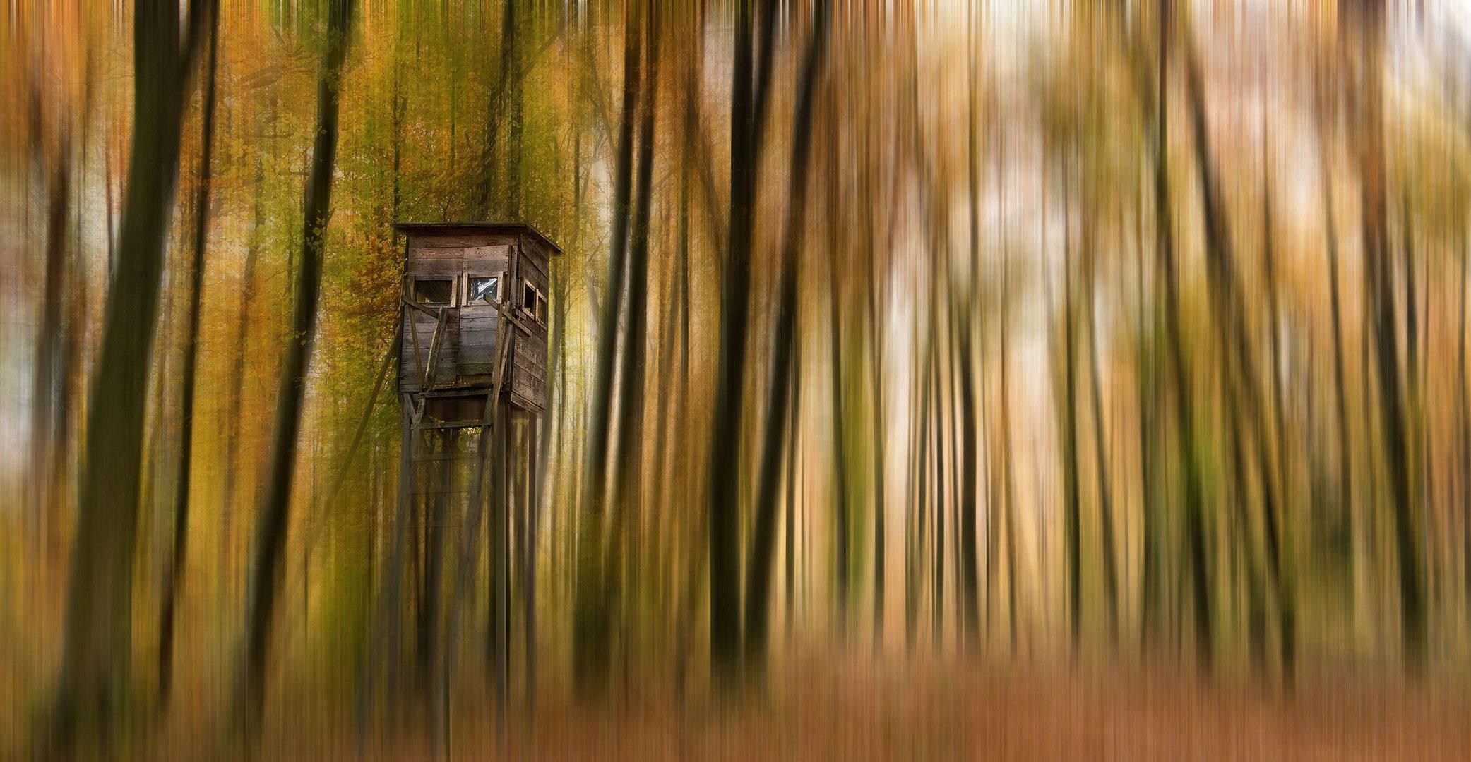 Surealer Herbst II