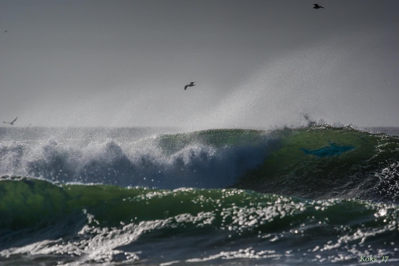 Surfer weg