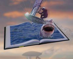 Surfer wird von Hai angegriffen