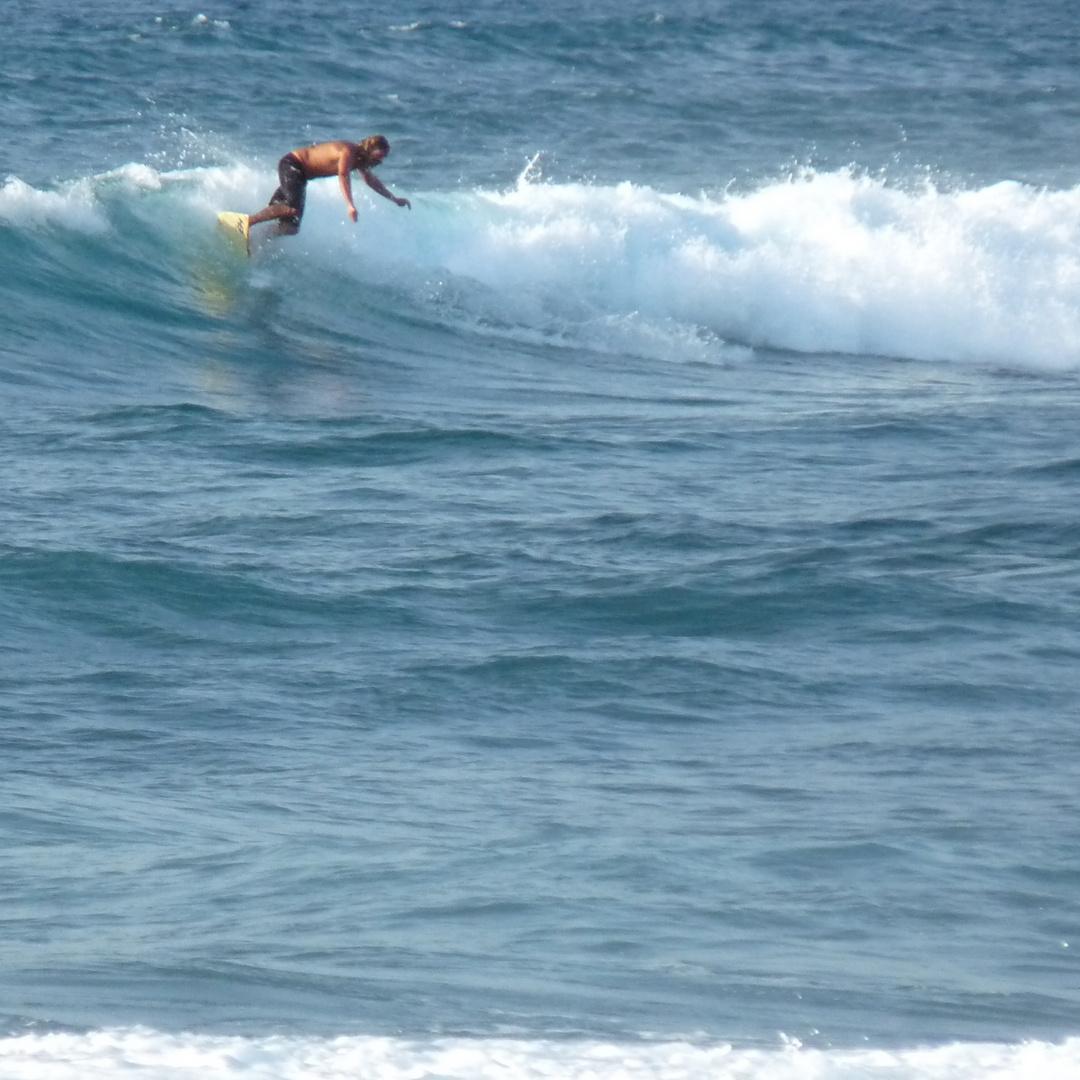 _surfin_