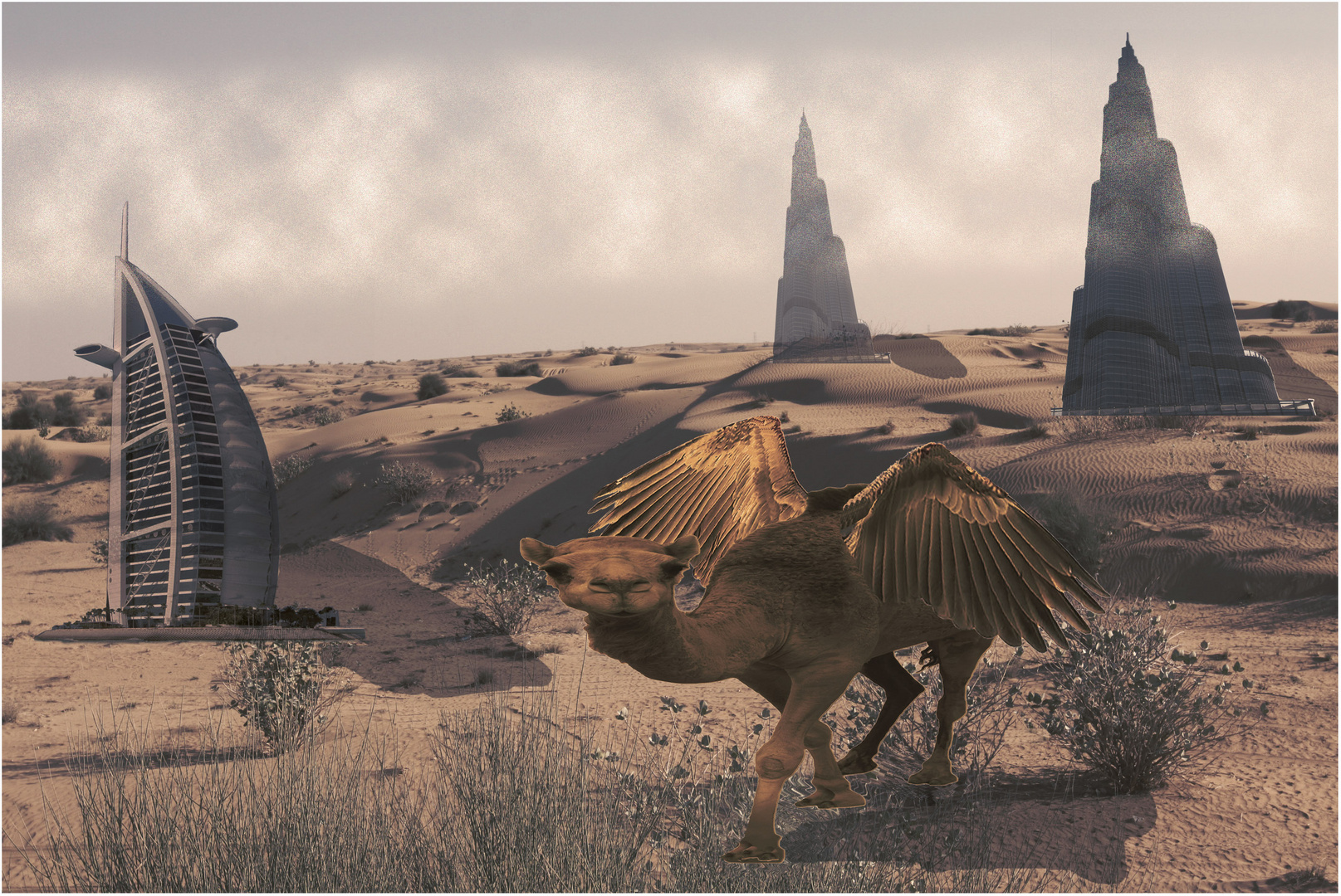 Surprises of the Desert