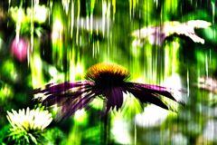 Surreale Fotokunst 1636-0009 HDR2