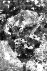 Surreale Fotokunst 2659-2675 HDR2