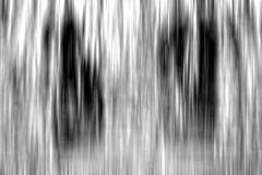 Surreale Fotokunst #DSC 0009