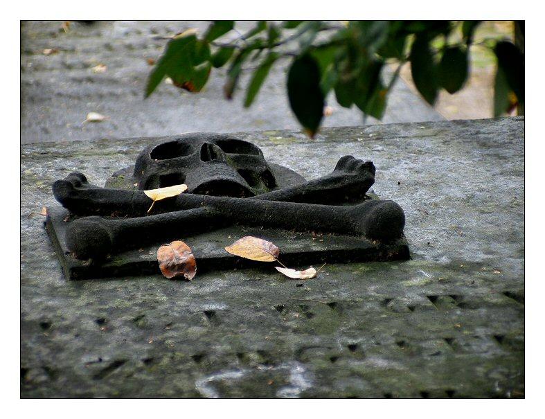 Surrender... (Graveyard Bavel)