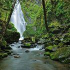 Susan Creek Falls II