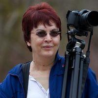Susan McInnis