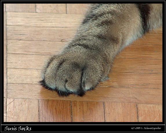 Susis Socks