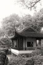 Suzhou Garden 1