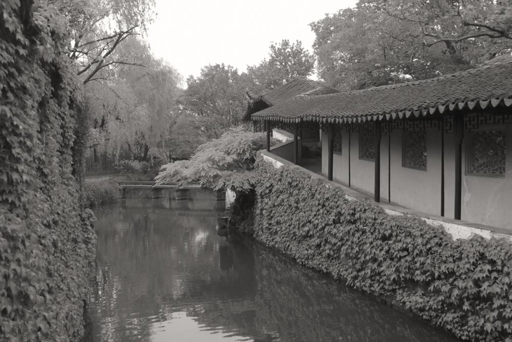 Suzhou Garden 6