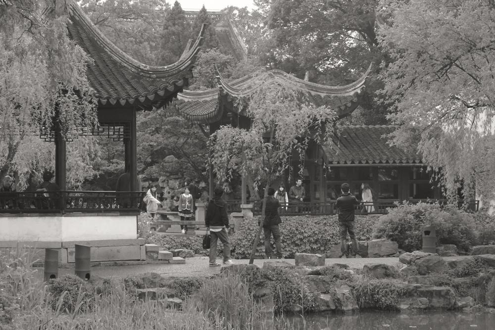 Suzhou Garden 7