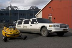 Svalbard Limmo....