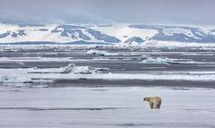 Svalbard (Spitzbergen)