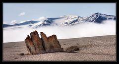 Svalbard - Tempelfjellet