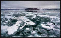Svalbard - Woodfjord