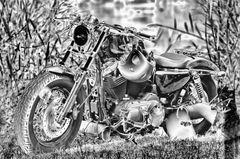 S/W Harley Davidson