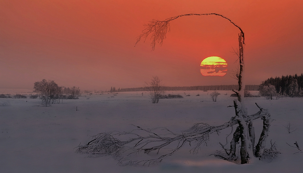 Swamp of ice and snow (10) : at sunset
