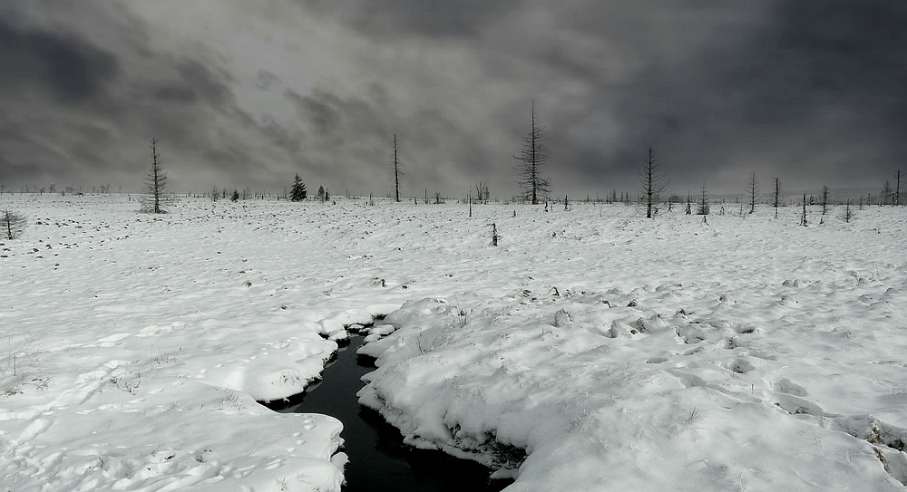 Swamp of ice and snow (11)
