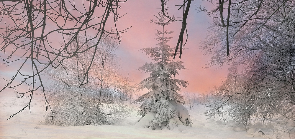Swamp of ice and snow (17)
