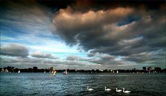 * Swan Lake *