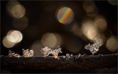 Swarovski Natur Juwelen