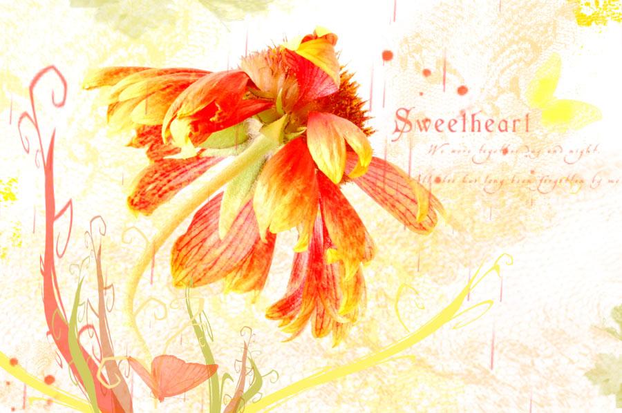 _sweetheart_