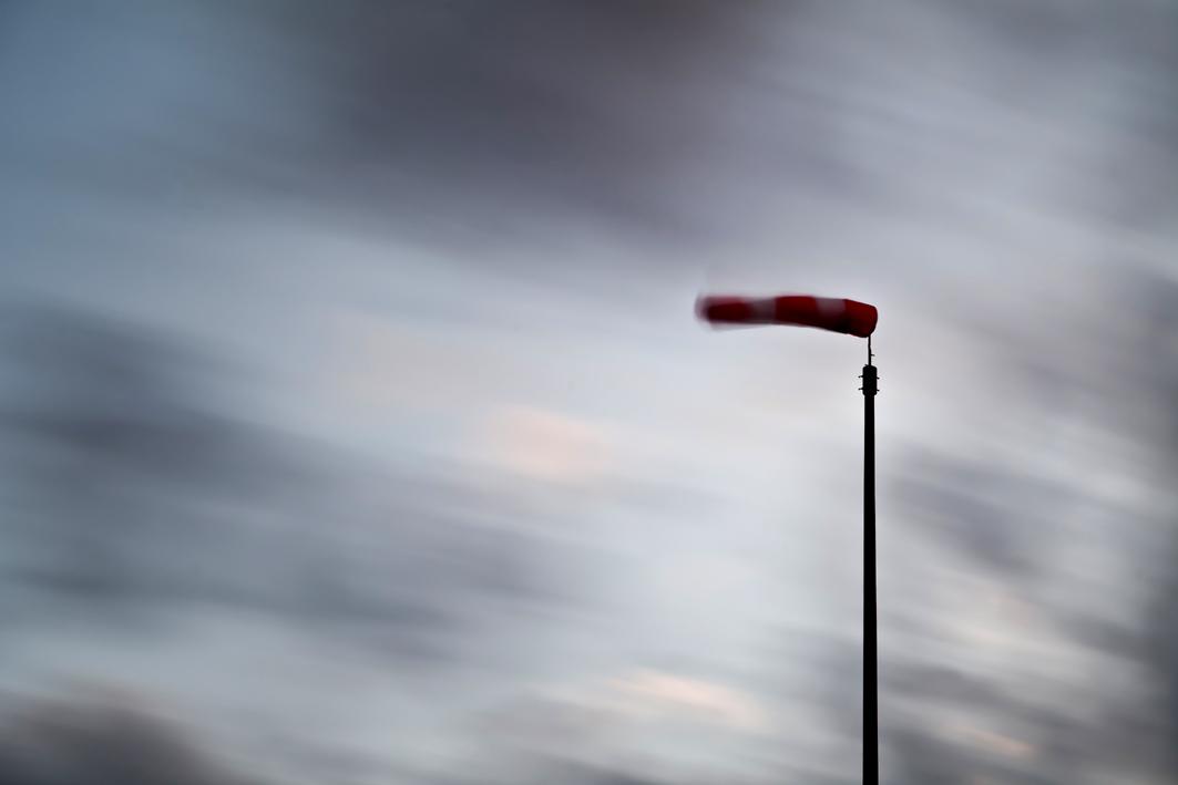 ...swinging in the wind ....