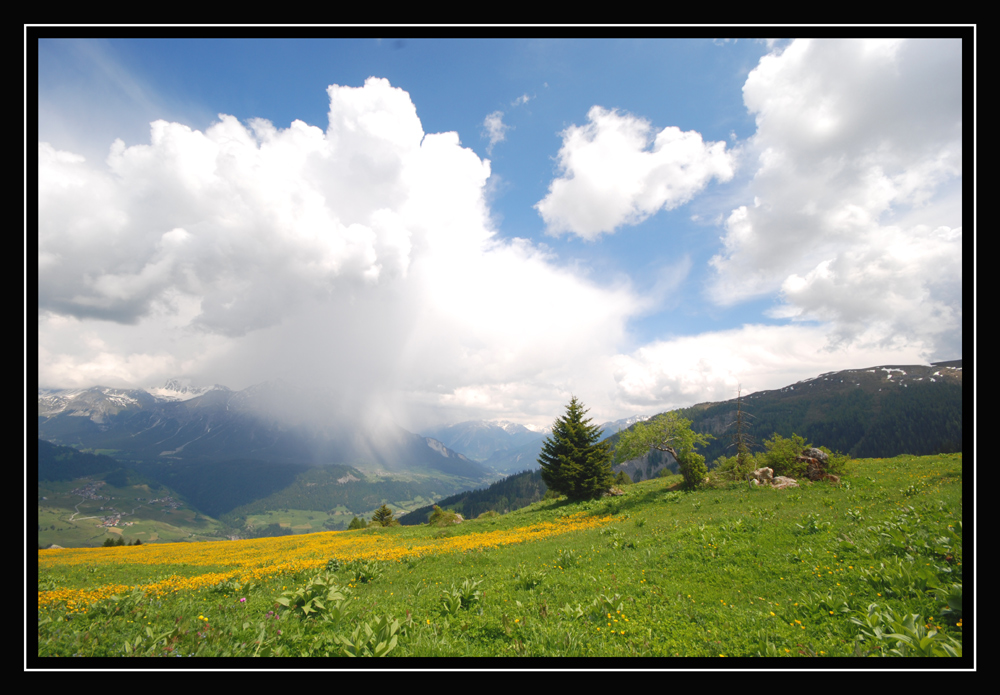 Swiss Alp Impression