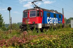 Swiss Cargo 421 395-5