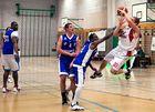 Swiss Central Basket Nr.10 Ralph (7)