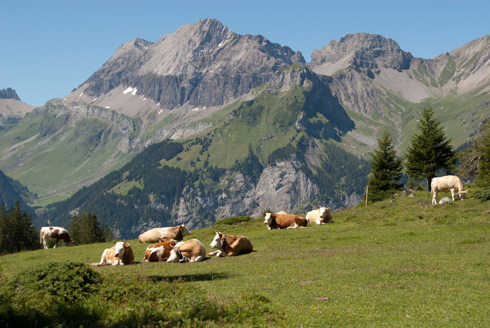 Swiss landscape II