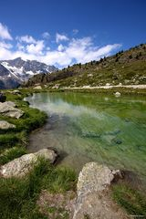 Swiss Scenery