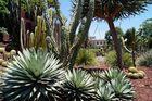 Sydney - Botanic Gardens 1